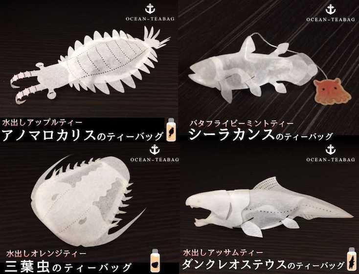 ヴィレッジヴァンガードオンラインで買える古生代の魚のティーバッグ