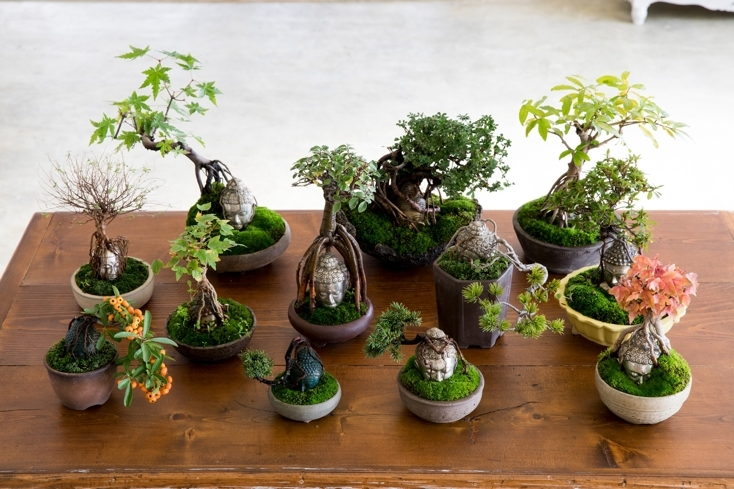 おしゃれな仏像盆栽