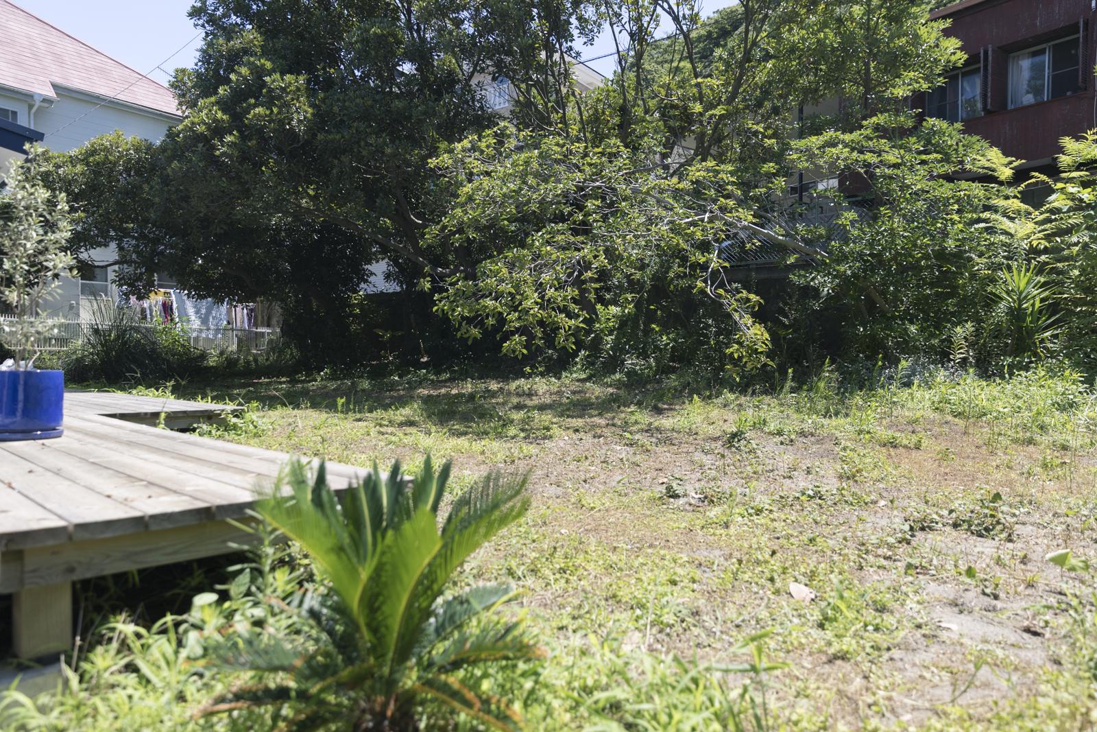 葉山の一軒家の庭