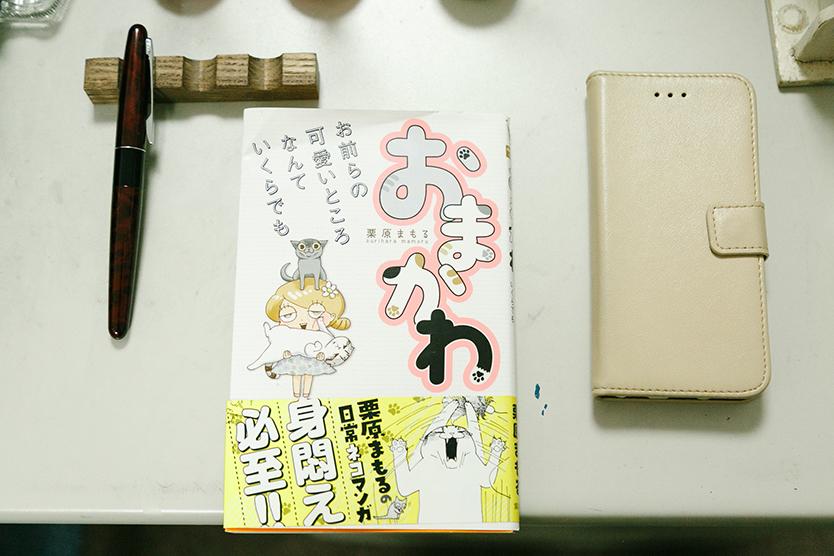 かわいい猫を描いた漫画、おまかわ
