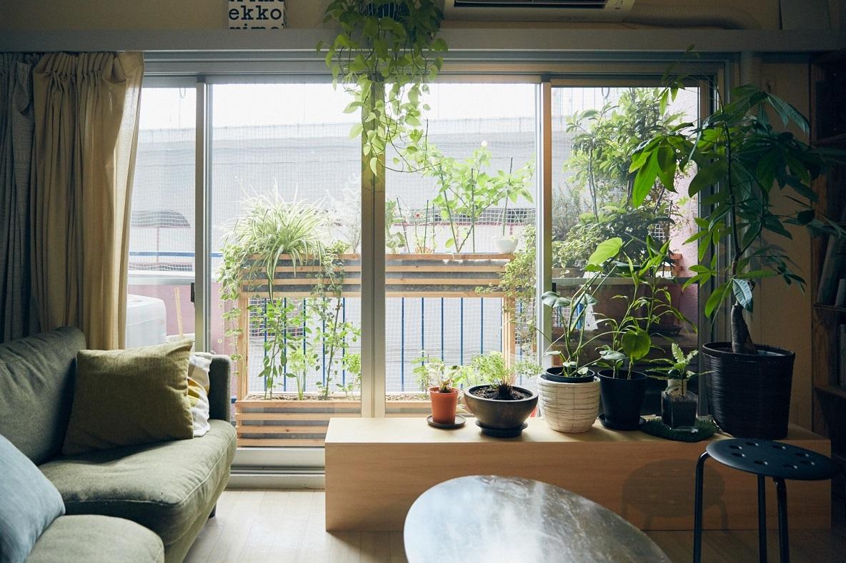 植物が多く、縁側を自分たちでDIYしたマンション