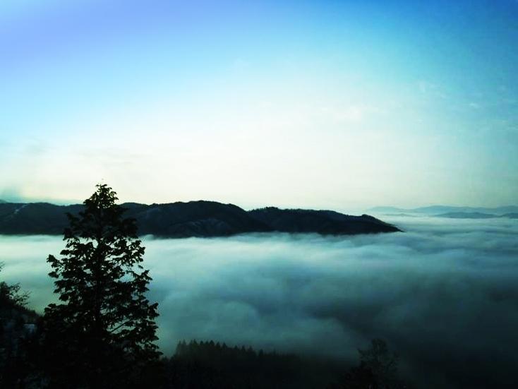 自然を感じるイベントフェスティバル「ヒダクマ秋祭り