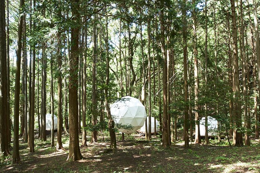 泊まれる公園「INN THE PARK」が、静岡県沼津市の施設をリノベして誕生