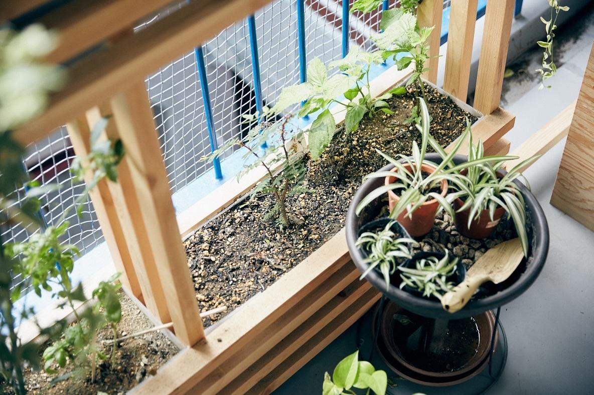 観葉植物のあるインテリアまとめvol.1。部屋に緑を取り入れたい人におすすめ みんなの部屋