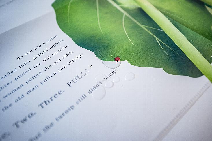 子どもに最適な体験型絵本Big Bookの不思議の国のアリス