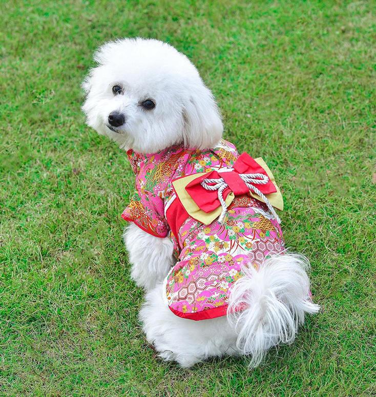 ペットの着物