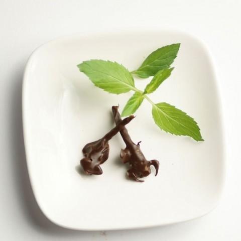 キョクトウサソリチョコレート