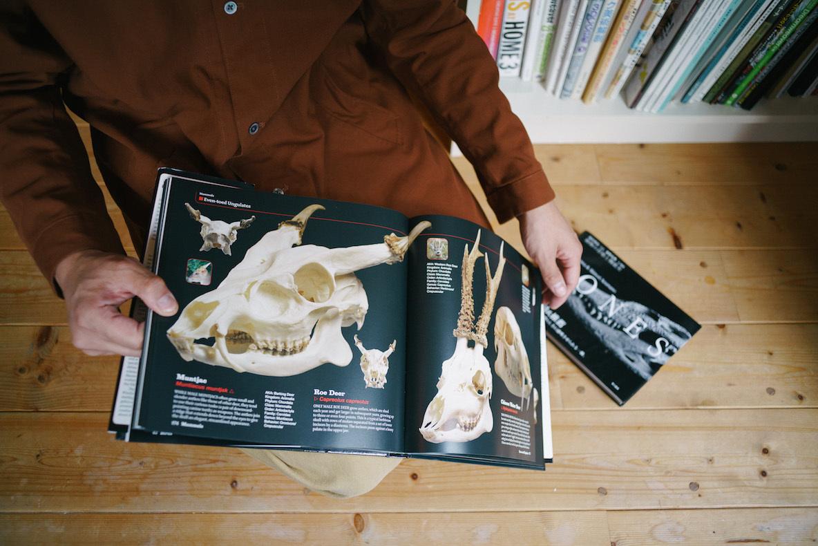 本棚に多数並ぶ「骨」についての本