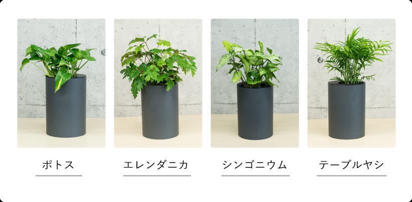 手作りIoTデバイスで、植物との「ちょうどいい関係」を作ろう【hacot】
