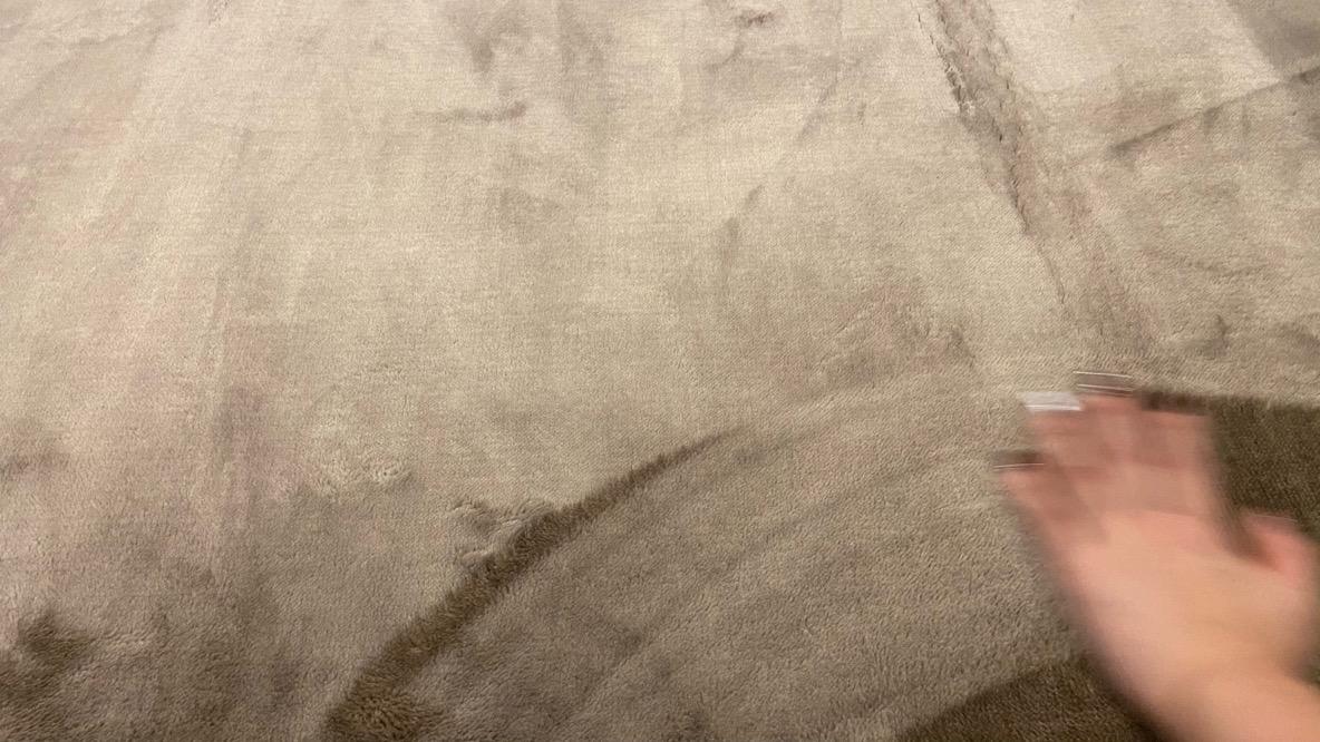 ニトリ「ふっくらウレタン入り吸湿発熱+蓄熱ラグ(NウォームSPo-i MO 185X185)」