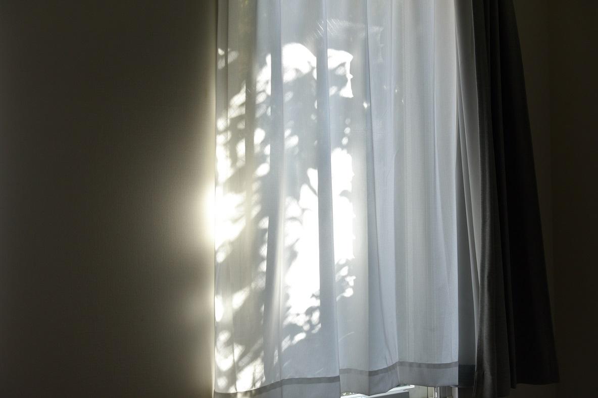 光の入り方がとてもキレイで印象的だった窓際
