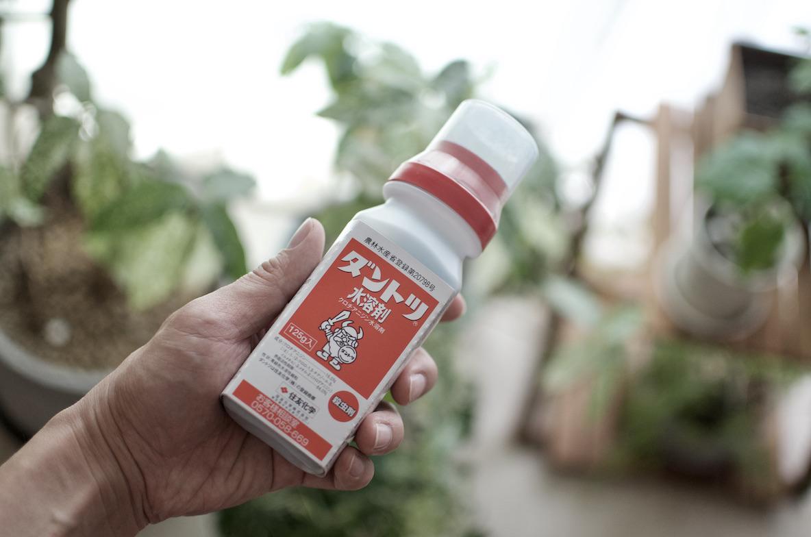 殺虫剤「ダントツ水溶剤」