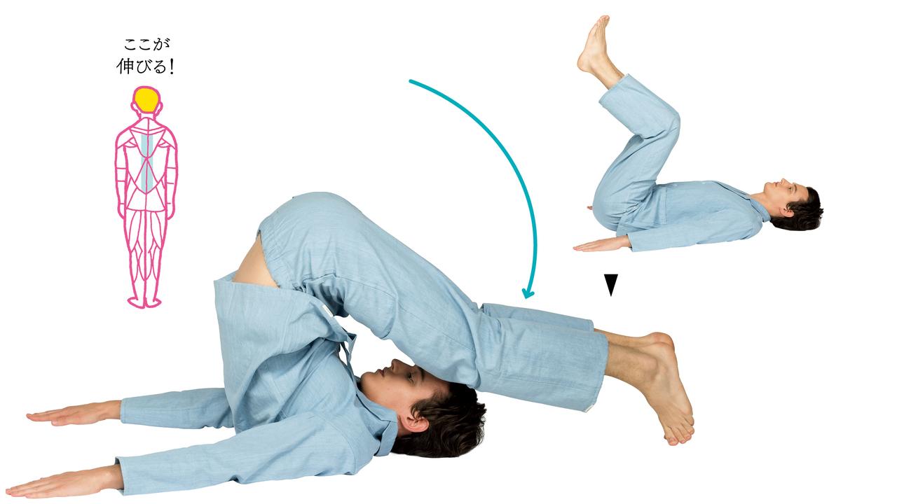 3. 腰(脊柱起立筋群)