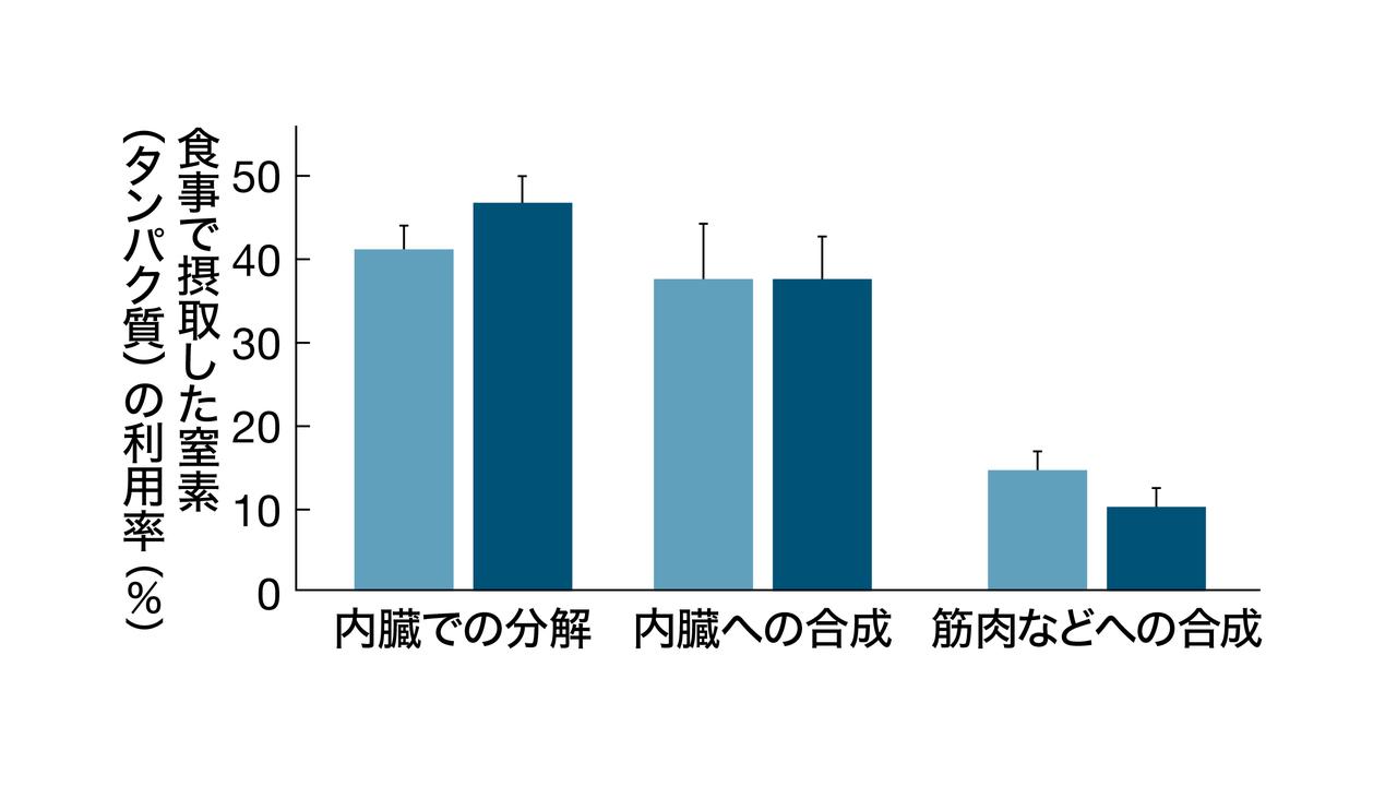 タンパク質を増やすと合成の利用率は減少