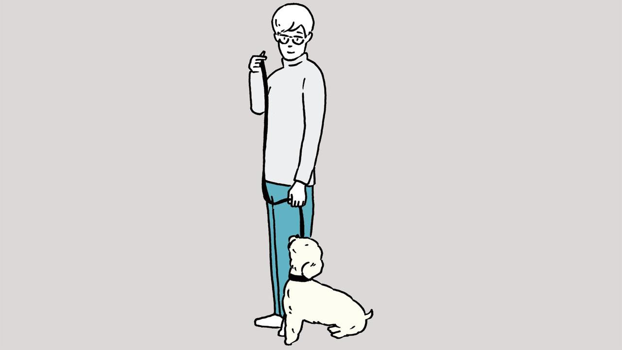 犬のストレスにならないような長さのリードを用意する