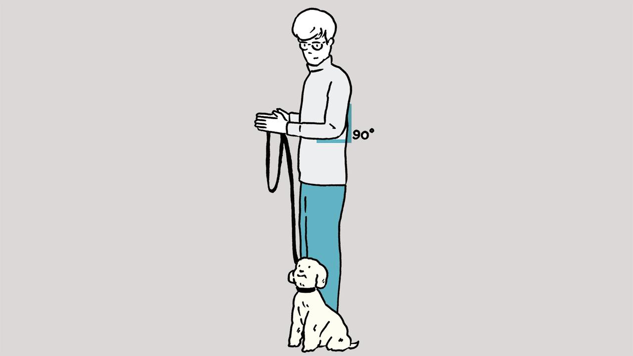 犬を左側のヒールポジションに坐らせる(立たせてもOK)。犬が正面または上を向いた状態で左肘を90度曲げる。