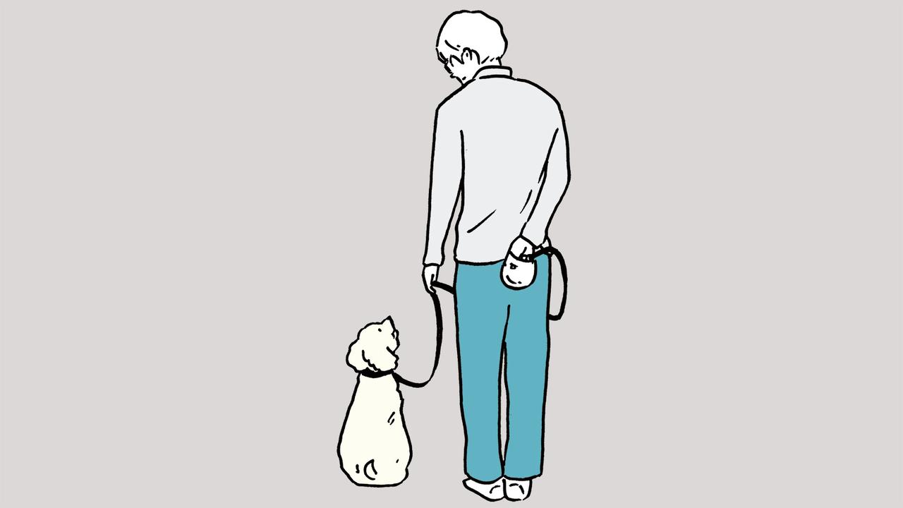 リードが短すぎると不要なテンション(引っ張る力)がかかり、犬のストレスになる