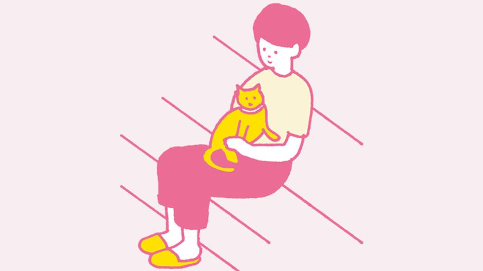 猫と一休み