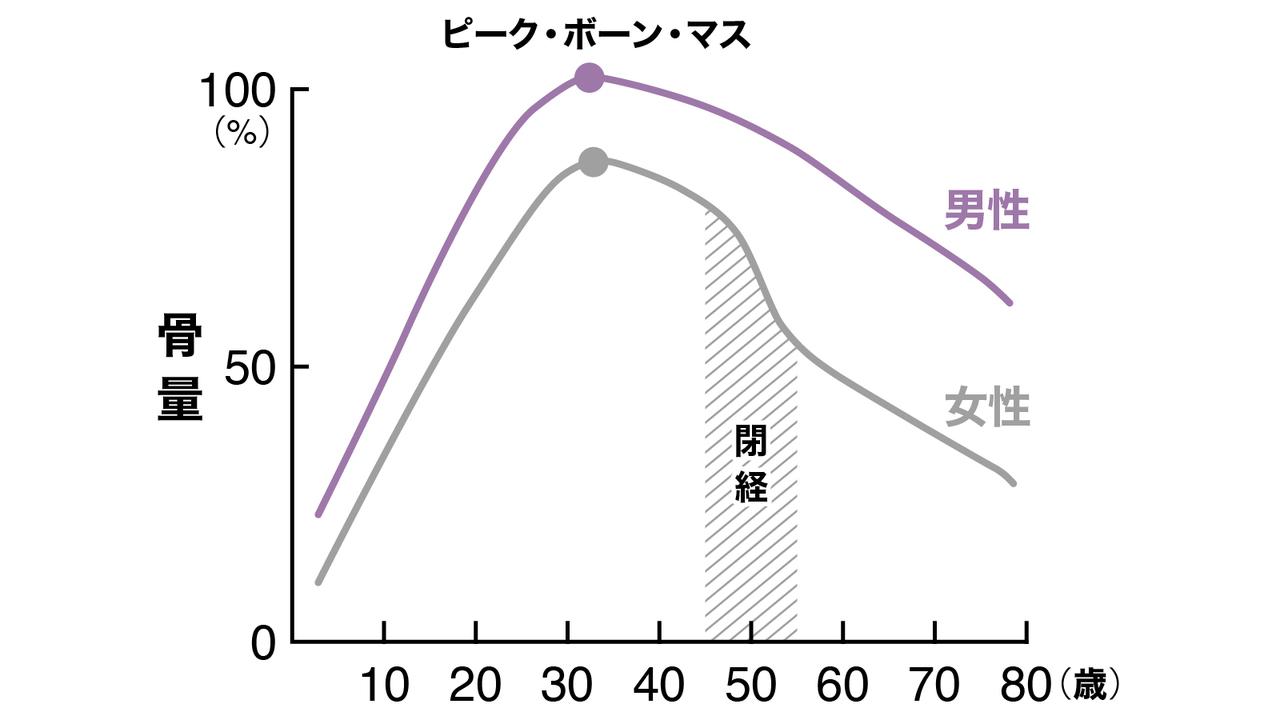 年齢、性別で見る骨量の変化を示したグラフ