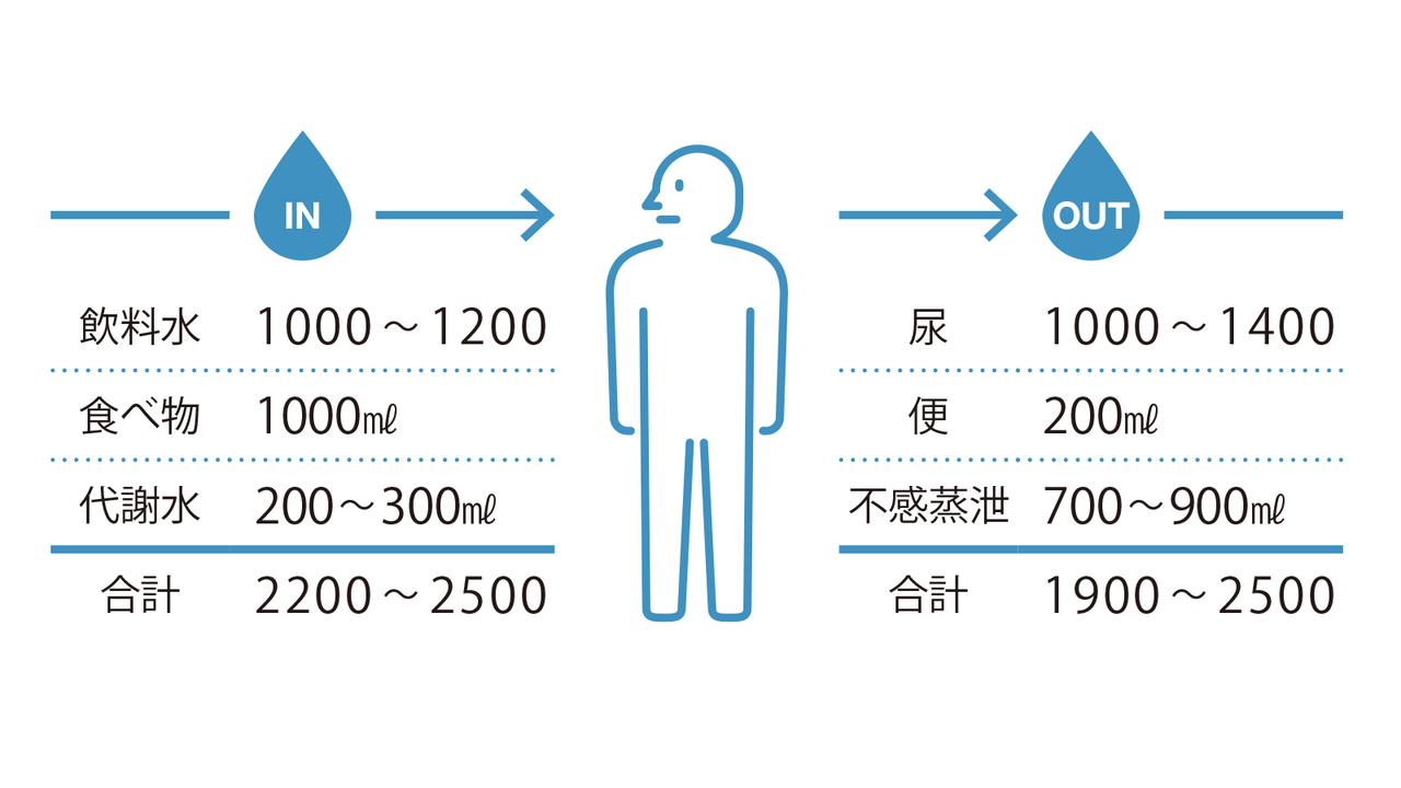 増やす 体 水分 量