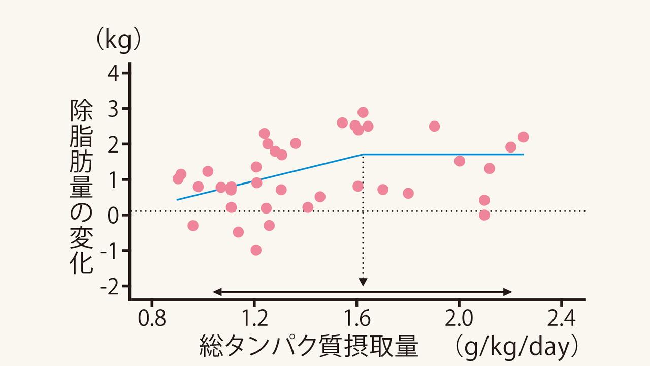タンパク質の摂取量と除脂肪体重の変化を示すグラフ