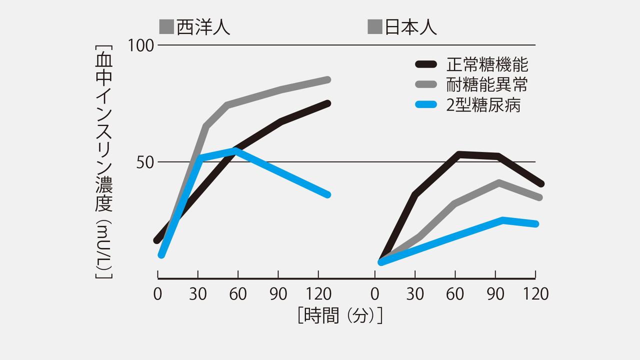 西洋人と日本人のインスリン分泌能を示すグラフ