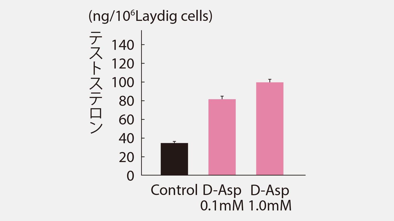 D-アスパラギン酸を投与した時のテストステロン値の変化