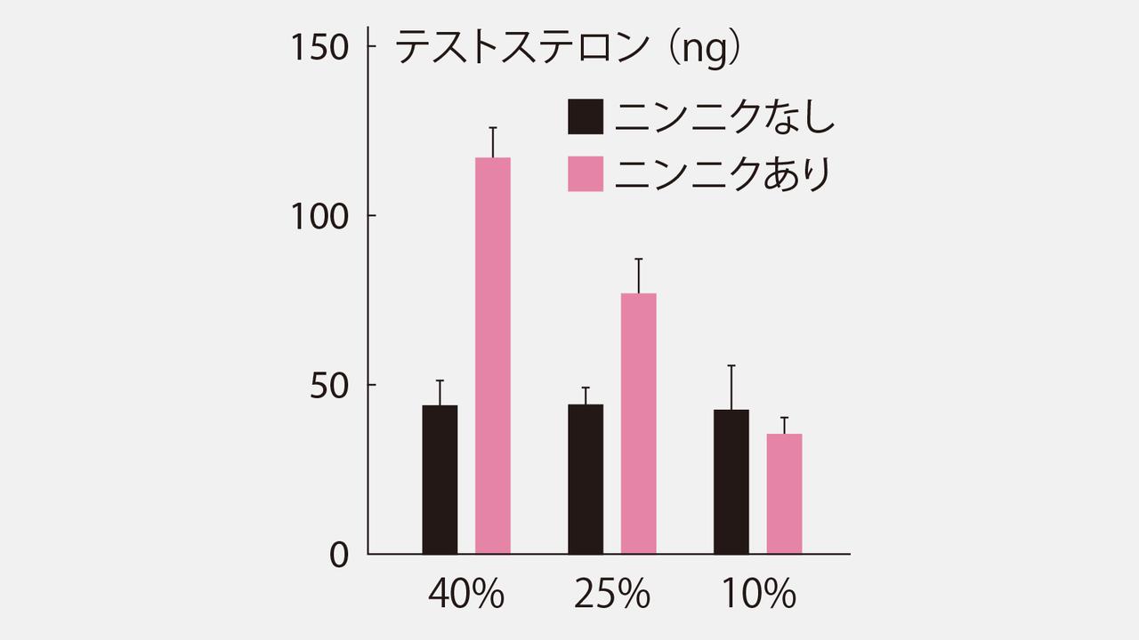 高タンパク食とニンニクでホルモン増強
