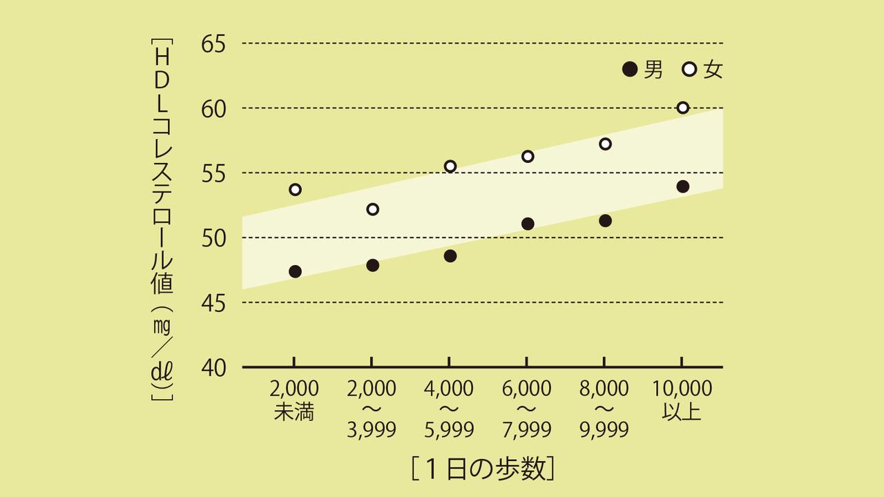 「1日の歩数」とHDLコレステロールの関係