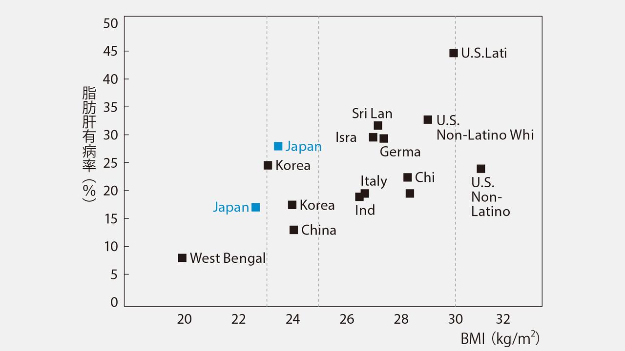 【グラフ】太らなくても、いともたやすく脂肪肝になる日本人