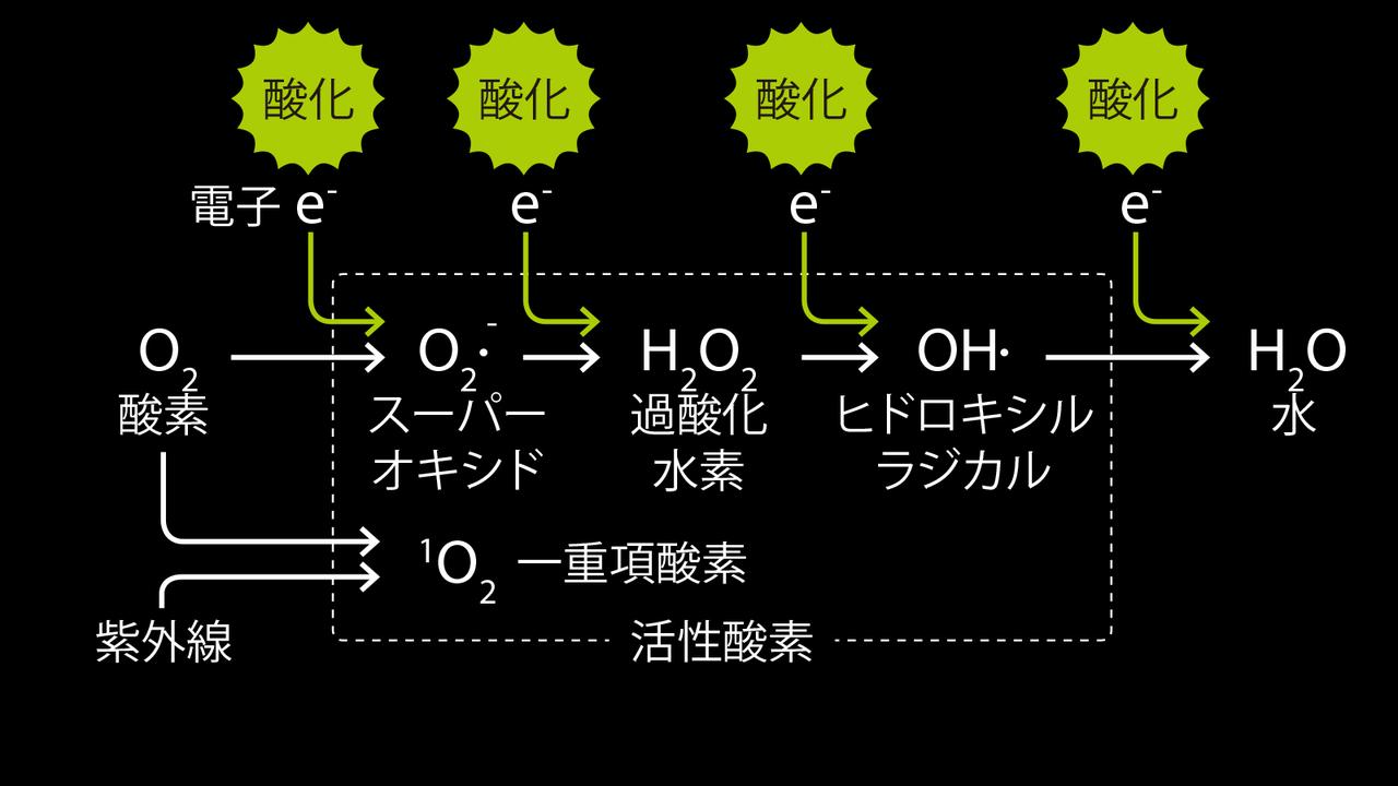 活性酸素は連鎖的に生まれて酸化を連続させる