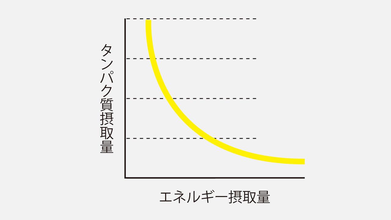 エネルギーの摂取量がタンパク質節約作用に。