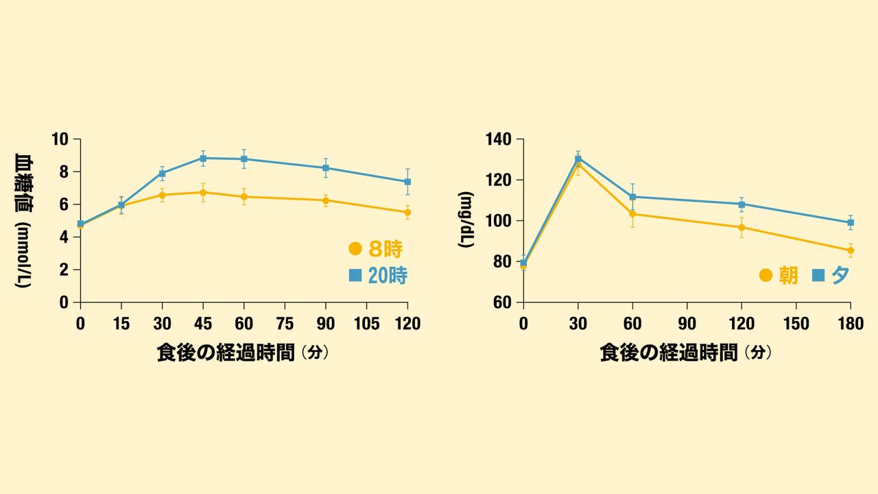朝食と夕食における食後の血糖値変動