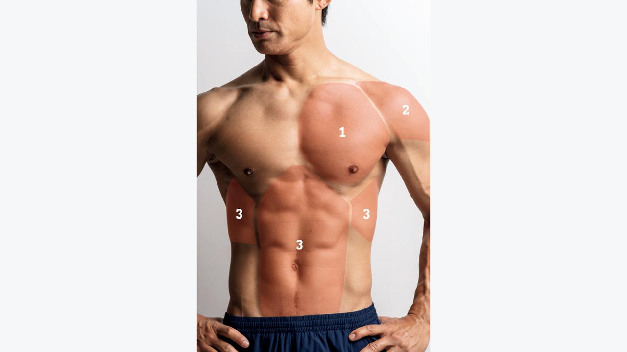 上半身に鋭いキレをデザインする3つの筋肉群