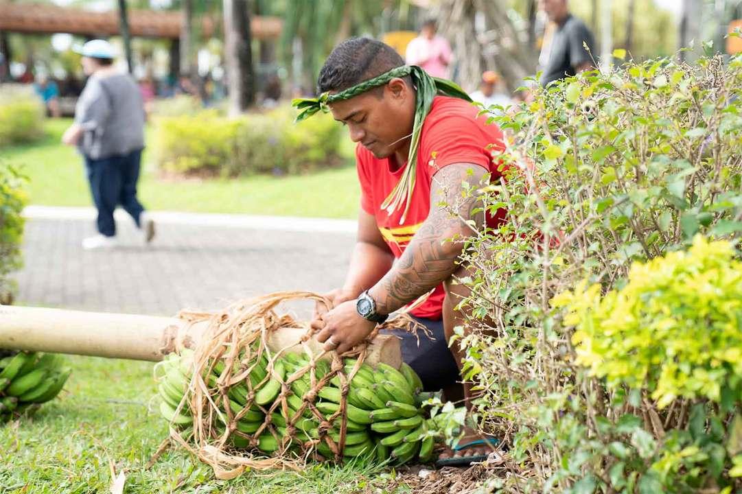 天然の木の両端にバナナの房を手際よく括り付けていく。