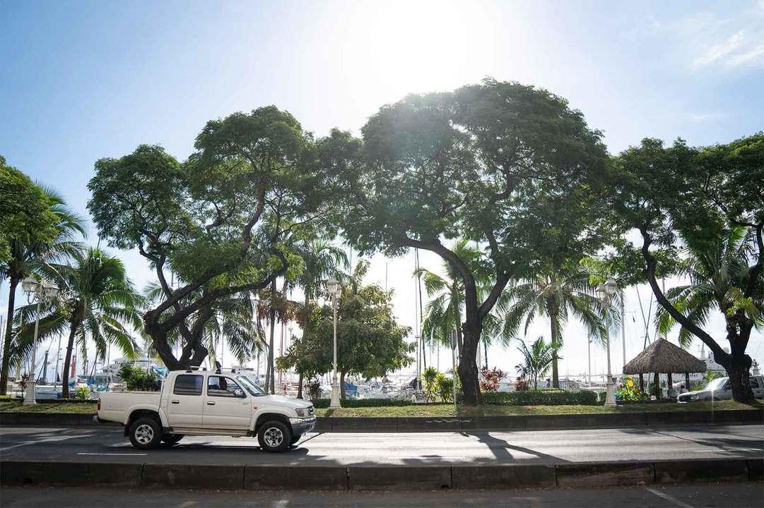 レンタカーは空港内のレンタカーデスクや各ホテルのレセプション、パペーテ市内のオフィスで手配できる。国際運転免許証がなければ、ホテルなどで組まれたドライブツアーに参加するのも一案だ。