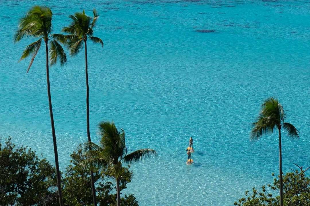 モーレア島のビーチでSUPする人たち。
