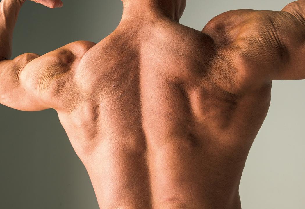 リー・カーマイケルさんの筋肉