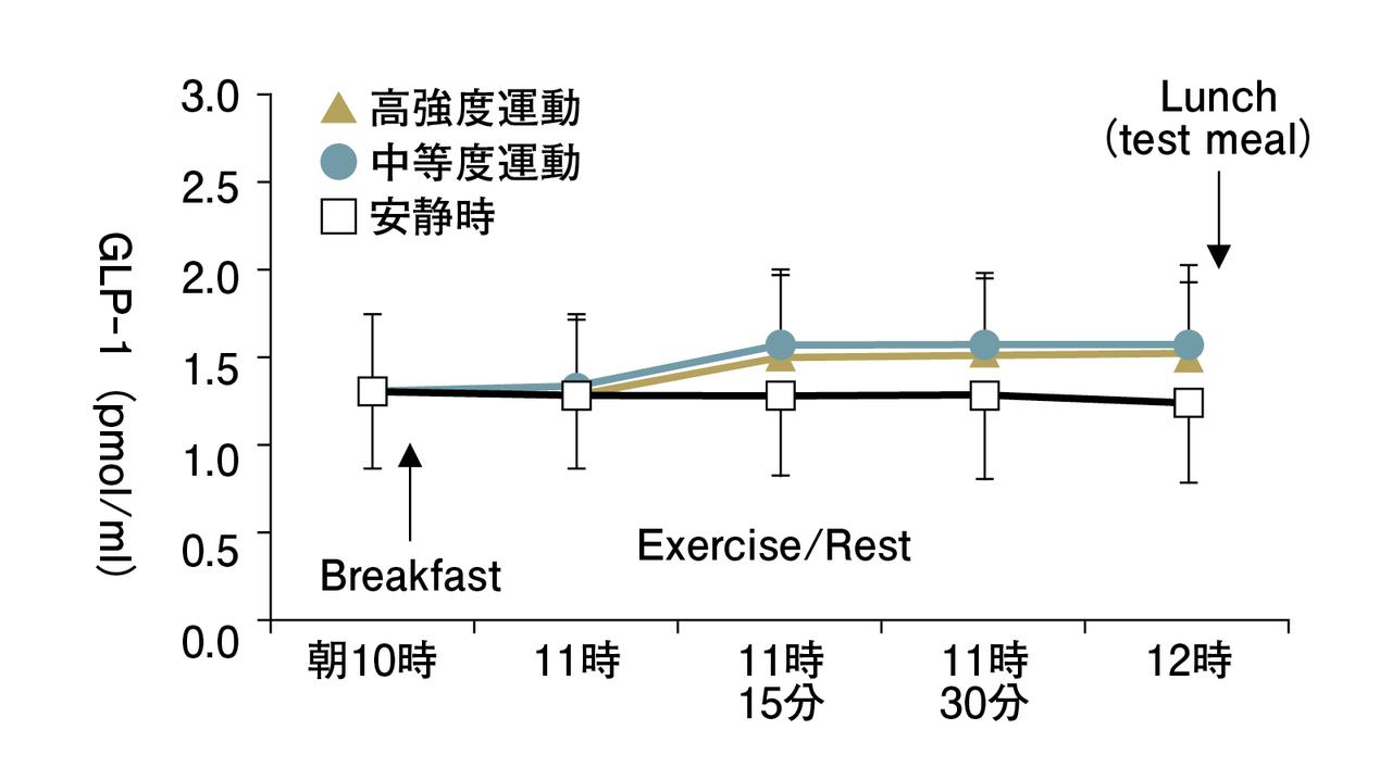 運動で食欲抑制ホルモンが増える?