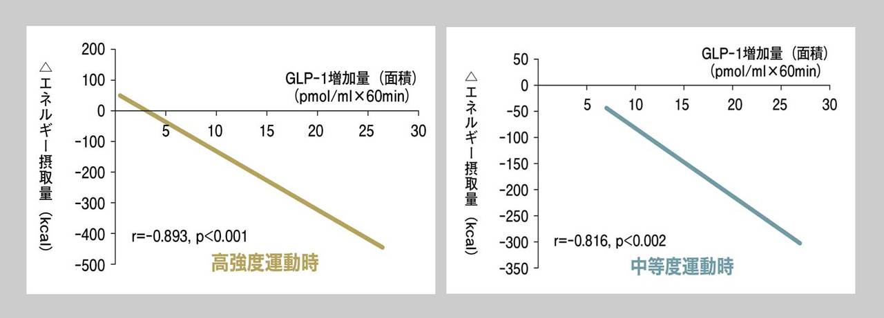 2つの運動強度とエネルギー摂取量の変化を比べてみると
