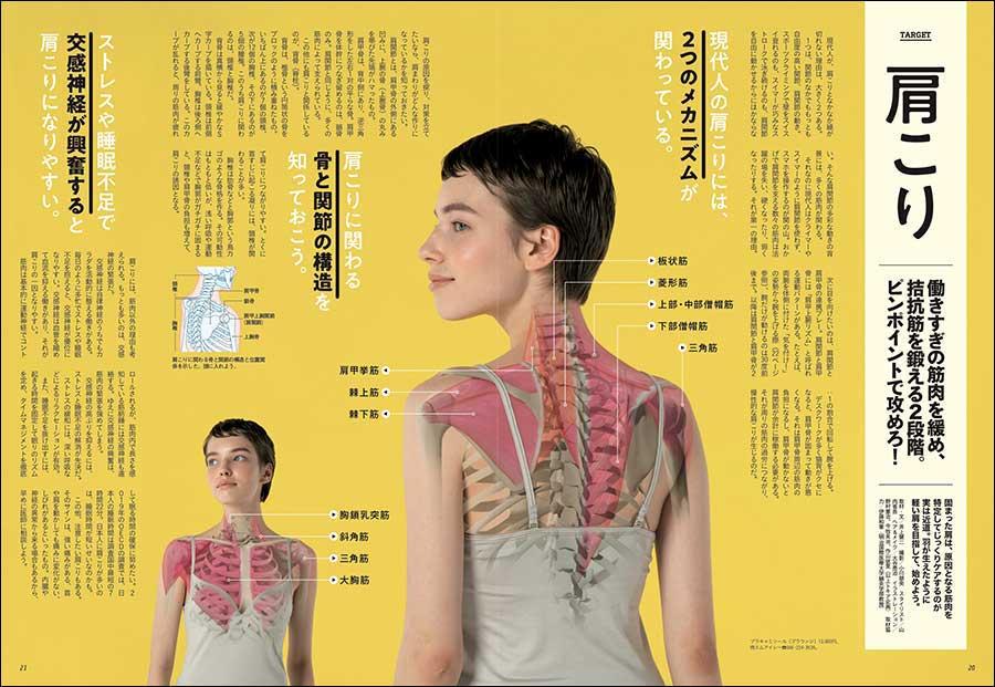 『肩こり 働きすぎの筋肉を緩め、拮抗筋を鍛える2段階。ピンポイントで攻めろ!』(本誌P20掲載) 固まった肩は、原因となる筋肉を特定してじっくりケアするのが実は近道。羽が生えたように軽い肩を目指して、効果的なストレッチ×筋トレを始めよう。