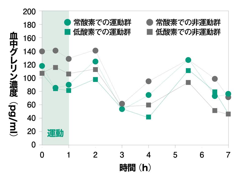 低酸素環境での運動でグレリンが最も低下。
